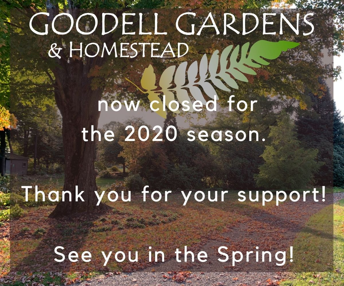 Goodell Gardens & Homestead is now closed for the 2020 season. Thank you for your support. See you in the Spring!